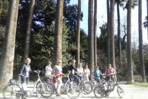 Electric Bike Tour & Food Tasting in Old Town of Athens
