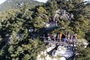 From Athens: Hiking Trip in Parnitha National Park & Lunch