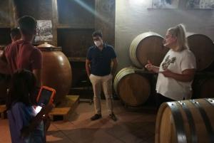 From Athens/Nafplio: Nemea Wineries Tour