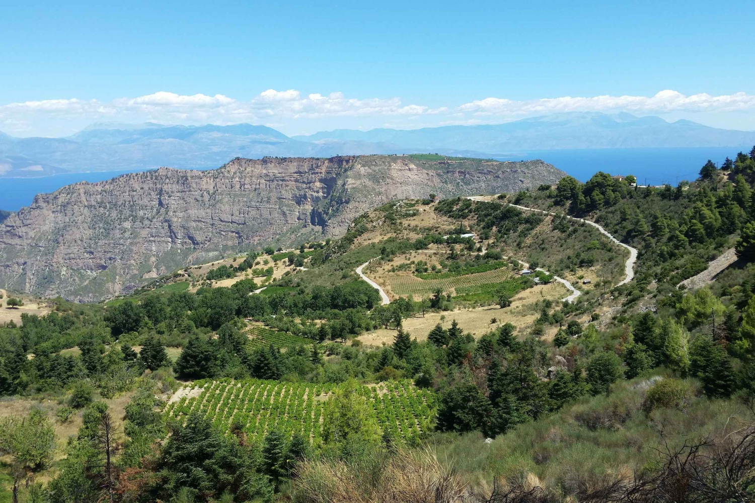 Full-Day Aigialeia Private Wine Tour with Lunch