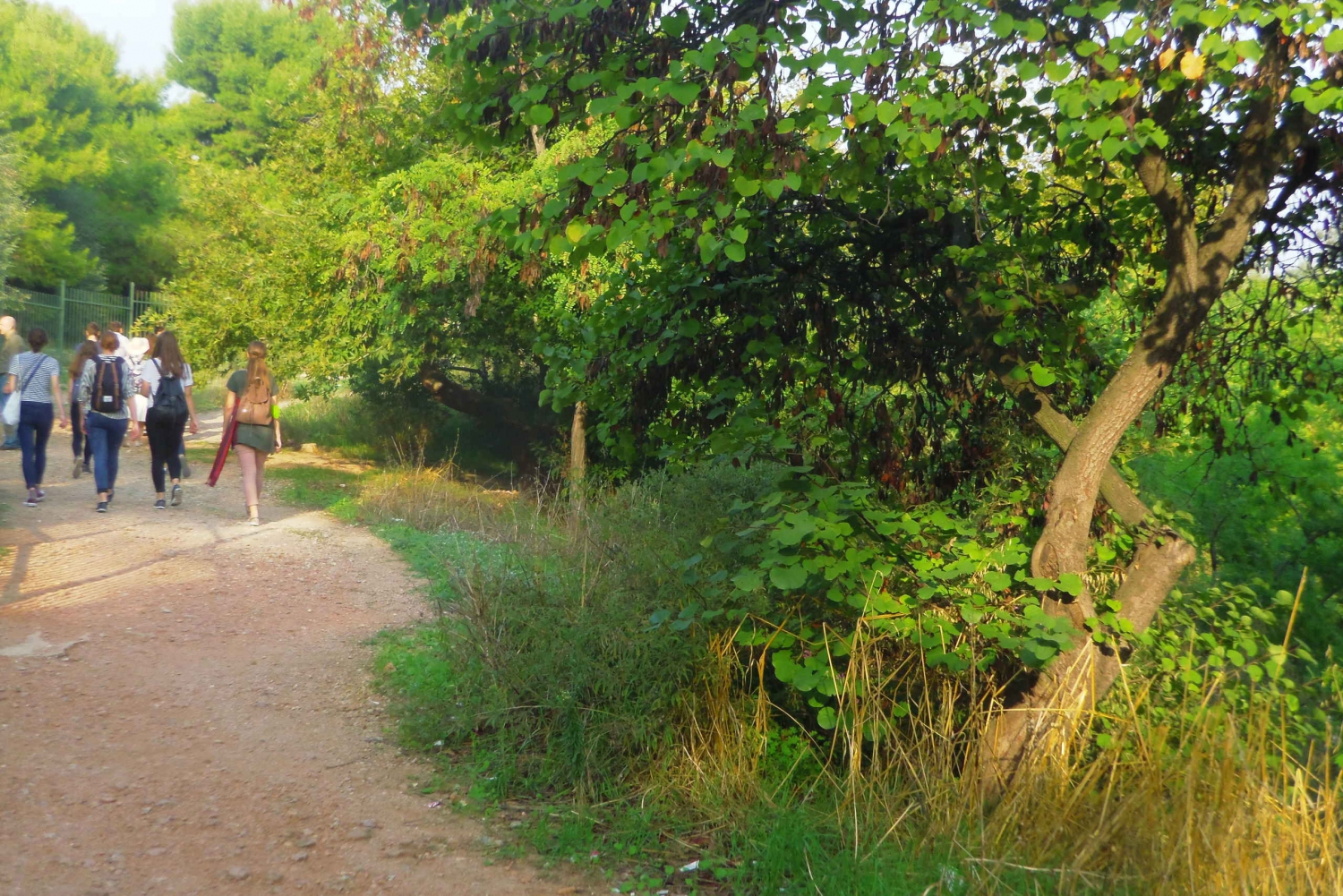 Mythical Rivers & Hills of Athens 3-Hour Walking Tour