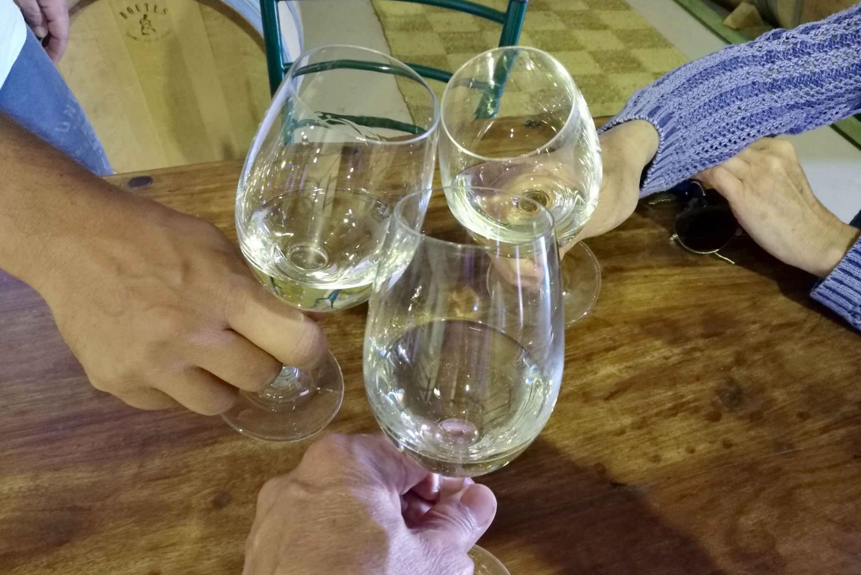 Wines, Lakes & Legends at Corinthia & Stymphalia