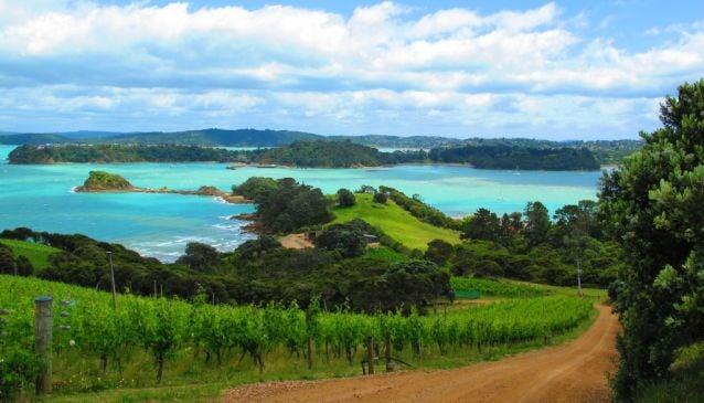 Island Hopping in Auckland's Hauraki Gulf