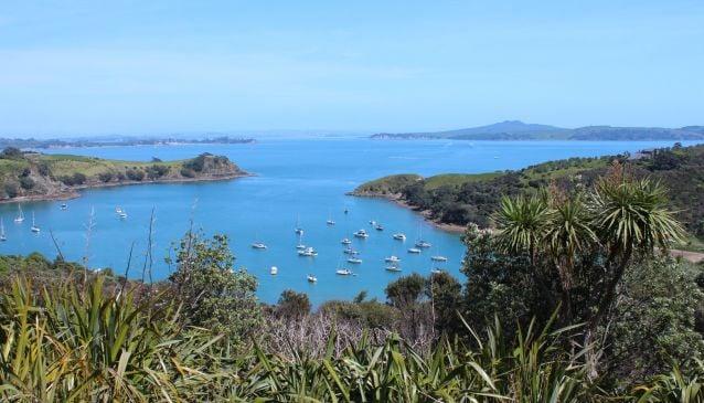 Take A Day Trip To Waiheke Island
