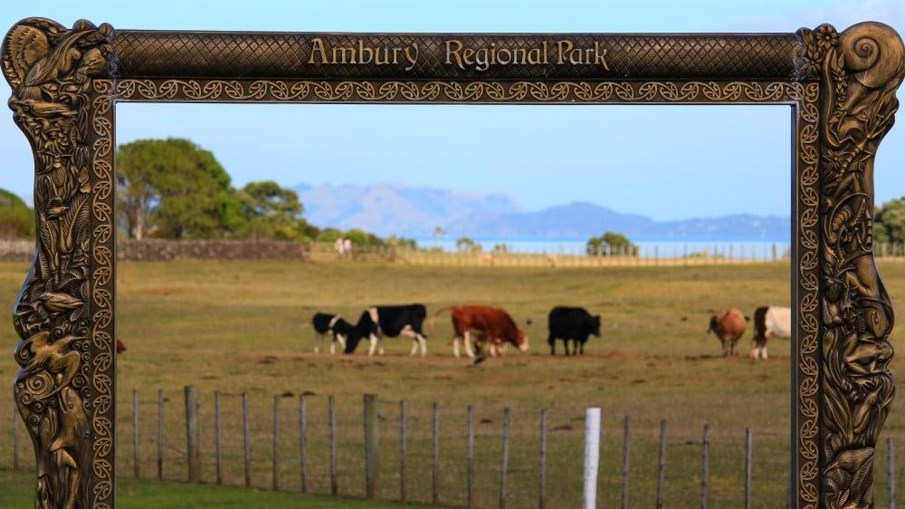 Ambury Regional Park