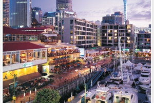 Auckland City Highlights: Morning Guided Tour