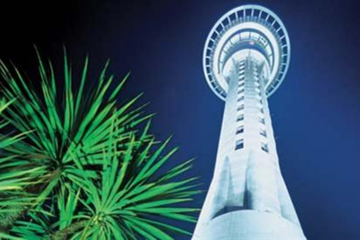 Auckland City Highlights & Sky Tower Tour