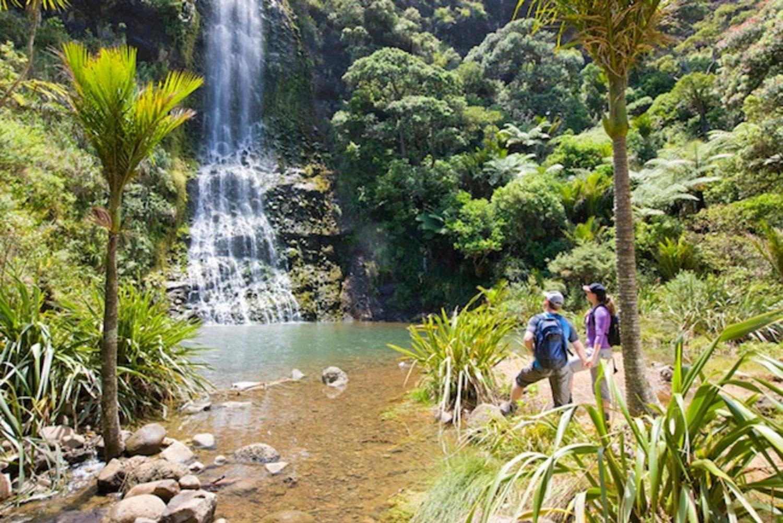 Auckland City & West Coast Luxury Tour