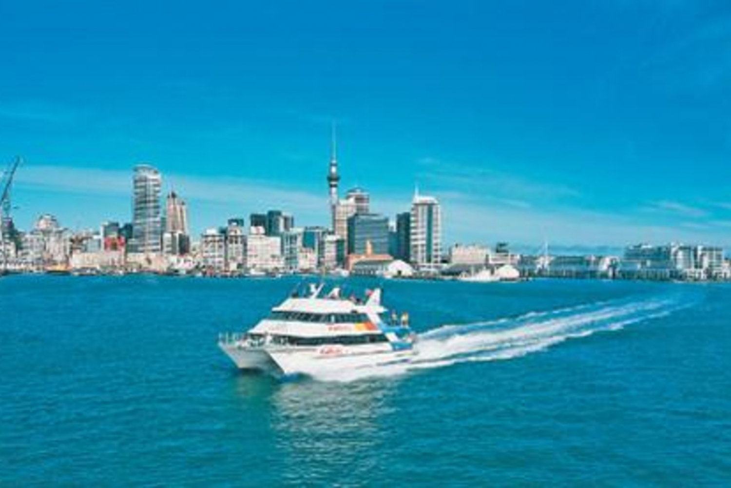 Auckland Harbour Cruise and Sky Tower Full-Day Tour