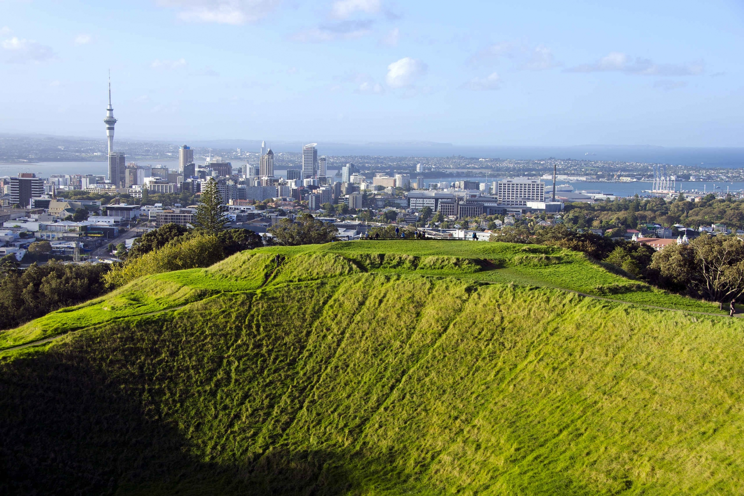Auckland Scenic Half-Day City Sightseeing Tour