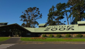 Auckland Zoo Functions