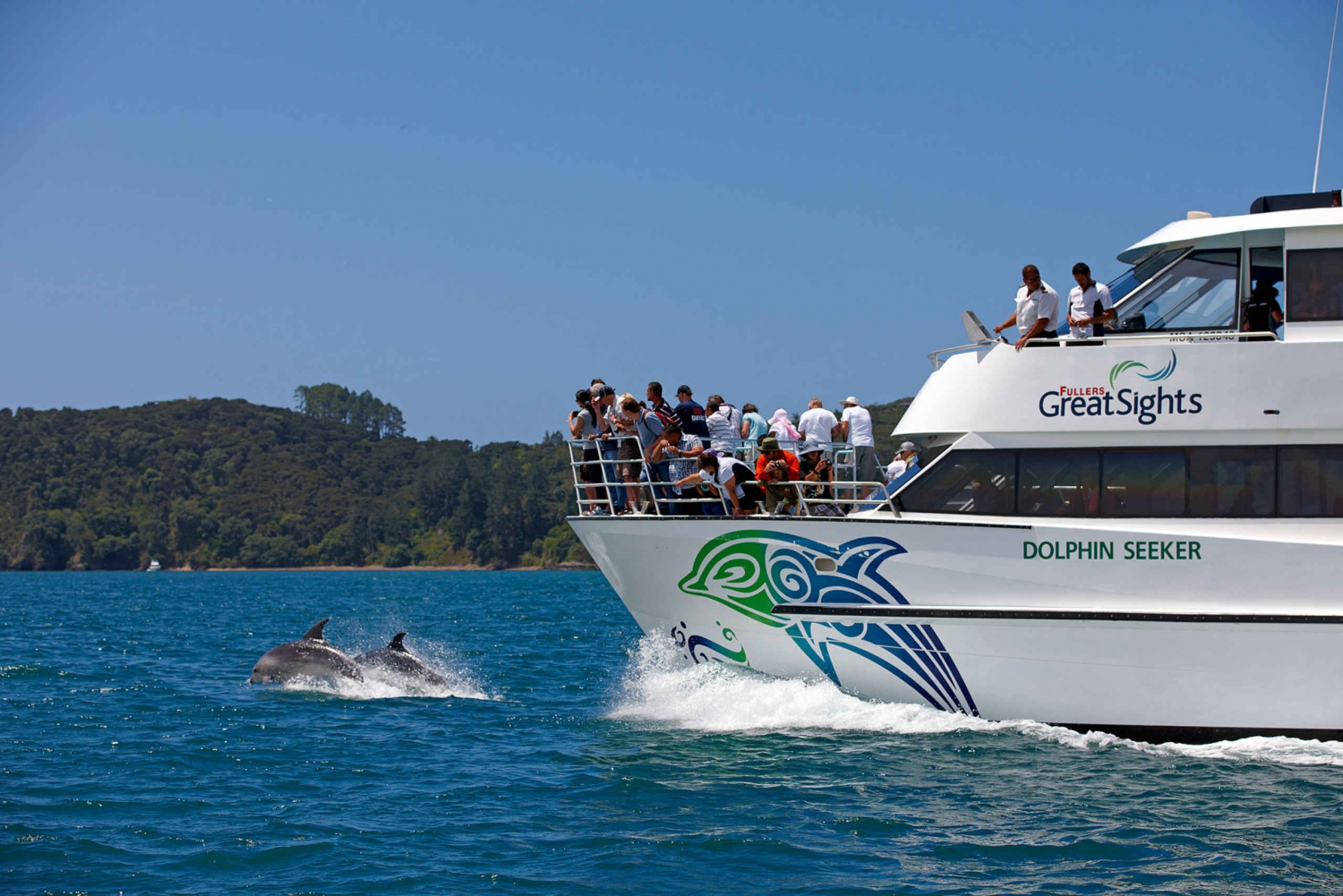 Bay of Islands Day Tour with Dolphin Watching Cruise