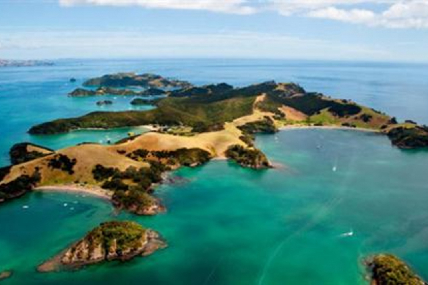 Bay of Islands Full-Day Express Tour From Auckland