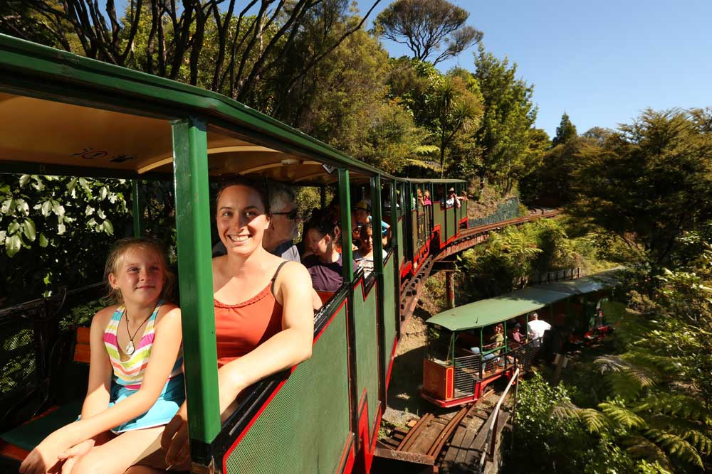 Driving Creek Railway and Potteries