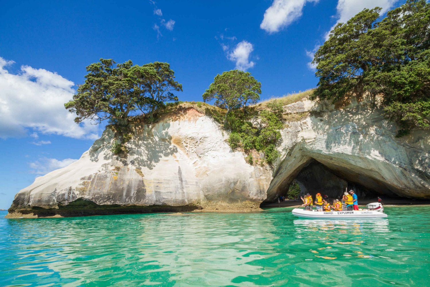 From Coromandel and Cathedral Cove Tour
