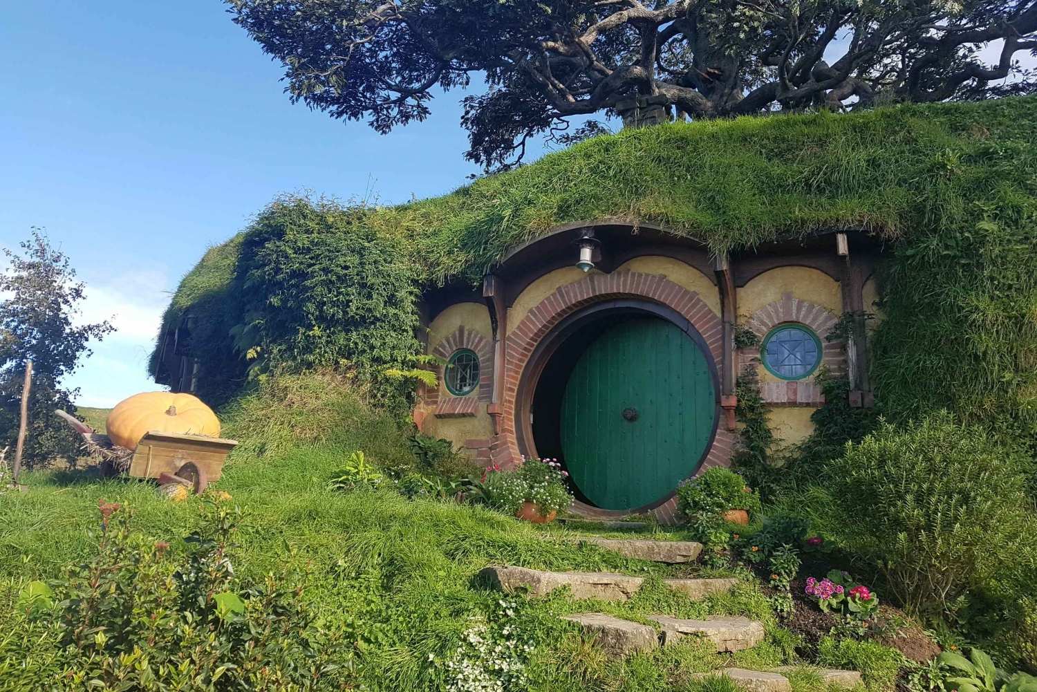 From Hobbiton & Rotorua Tour with Lunch at Te Puia