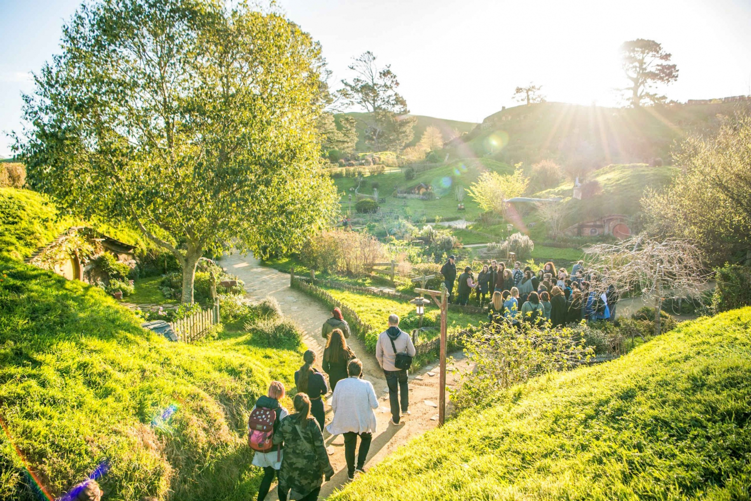 Hobbiton Movie Set Tour With Transport From Auckland