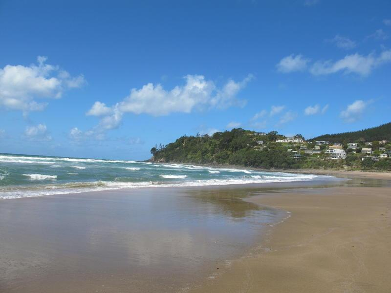 Hot water beach to auckland