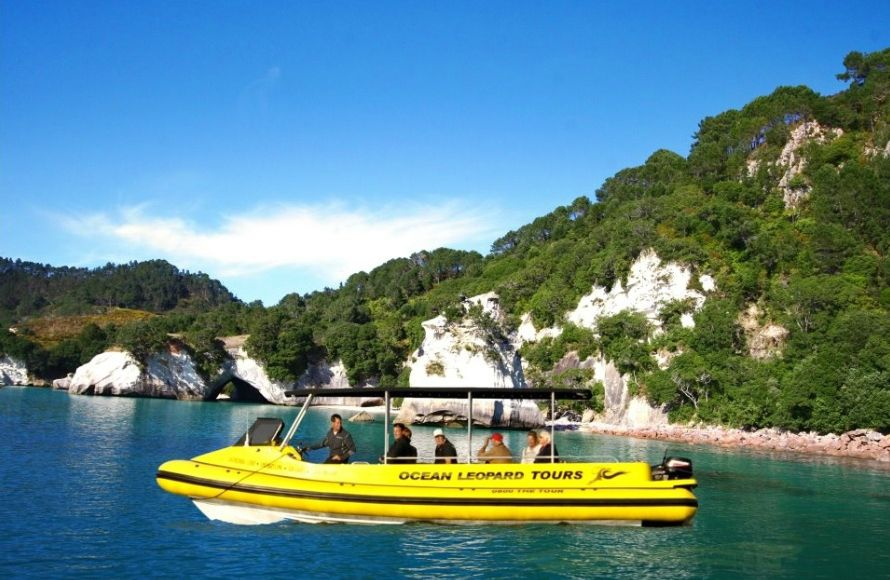 Ocean Leopard Tours Cathedral Cove Boat Tour