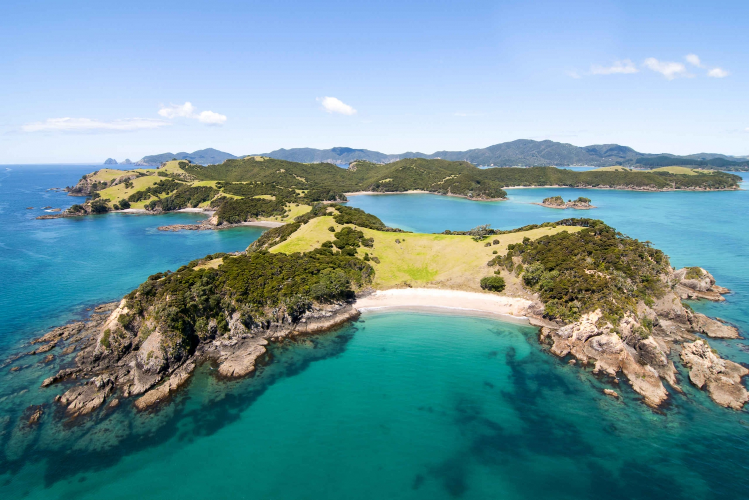 One-Way Bus Transfer to the Bay of Islands