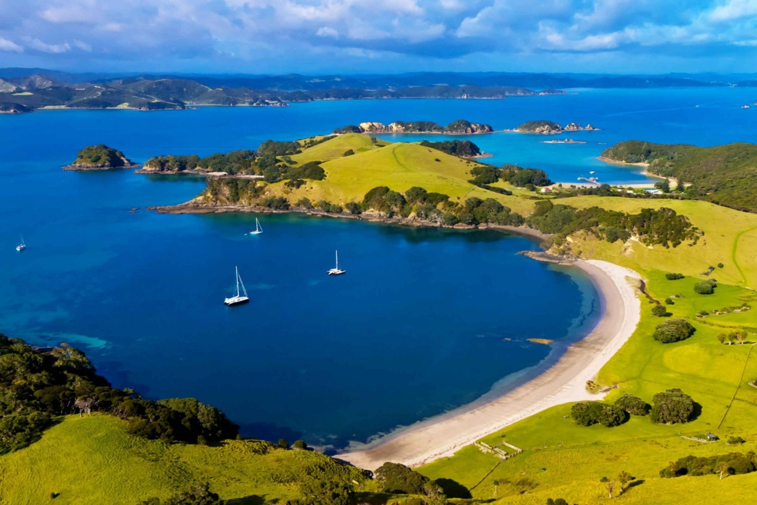 Private Bay of Islands Day Tour with Cruise from Auckland