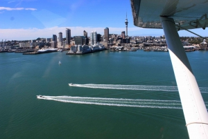 Rangitoto Island and Auckland City Scenic Seaplane Flight