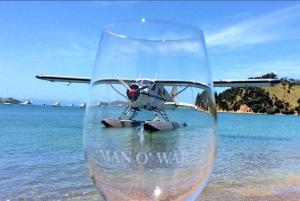 Waiheke Island 3-Hour Fly & Dine Wine Tasting Experience