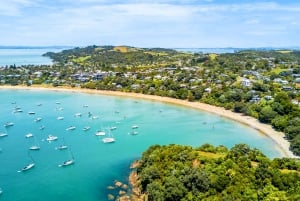Waiheke Island E-Bike Hire, Ferry Tickets & Picnic Lunch