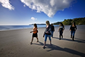Waiheke Island Ferry & Explorer Hop-On Hop-Off Bus Tickets