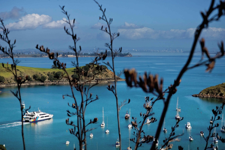 Waiheke Island Twilight Wine & Dine Tour with Ferry