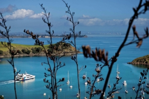 Waiheke Island Twilight Wine & Dine Tour with Ferry