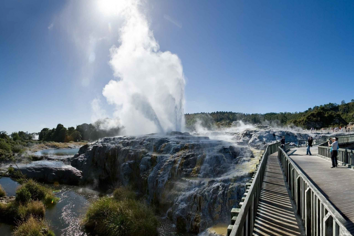Waitomo and Rotorua 2-Day Tour from Auckland