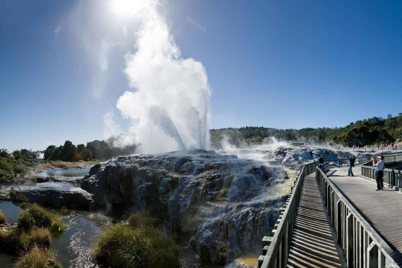 Waitomo and Rotorua 2-Day Tour from Auckland