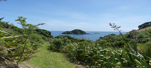 Top 5 Auckland Islands To Visit