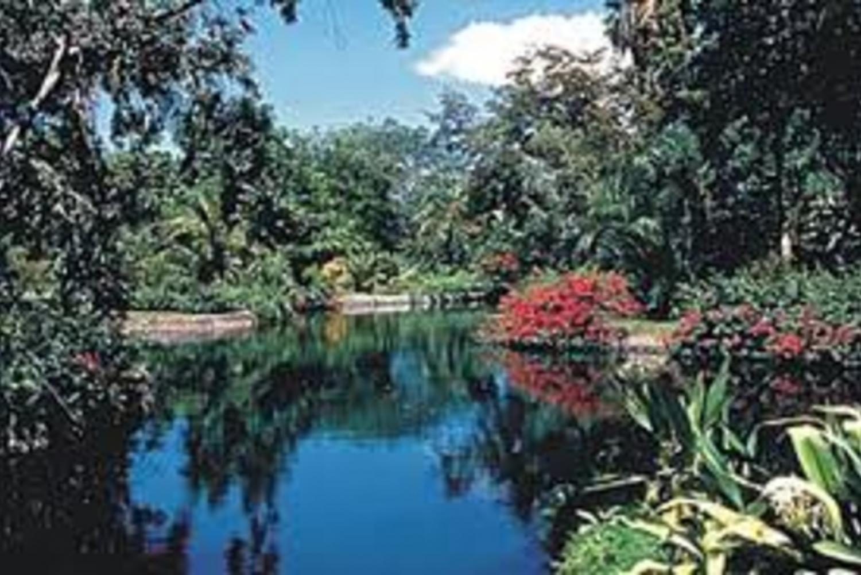 Freeport 4-Hour Garden of the Groves Tour