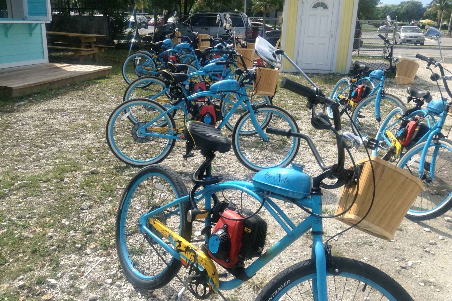 Freeport: Half-Day Motorized Bicycle Tour