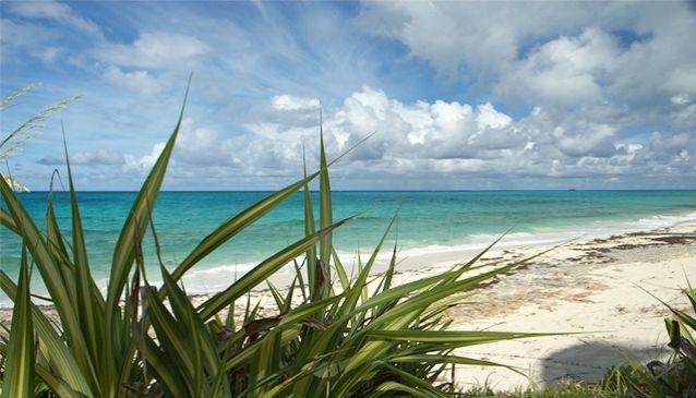 Man-O-War Cay