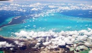 Plana Cays