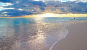 Shannas Cove Resort