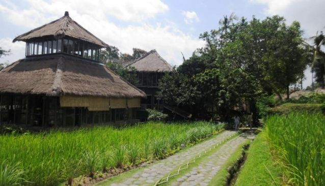 Top 5 Things to Do in Bali