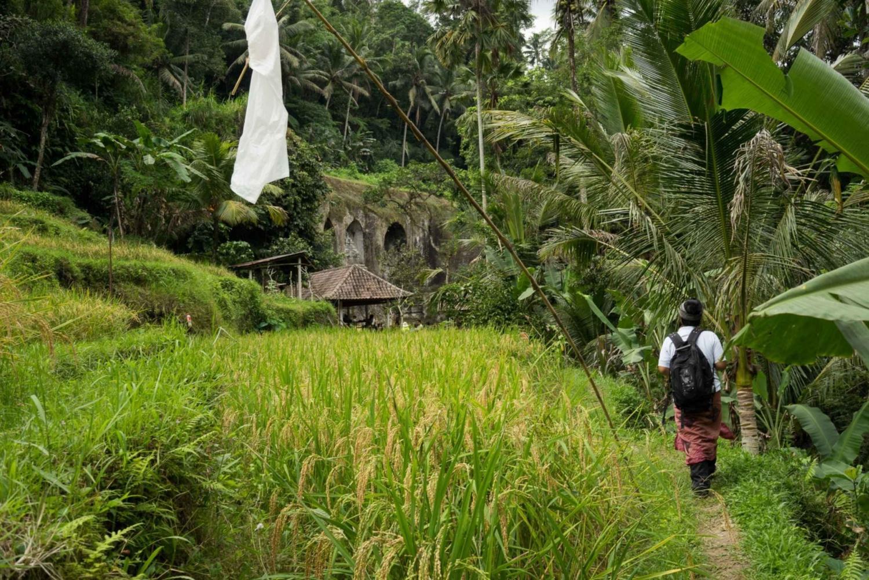 6-Hour UNESCO Sites Cultural Walking Tour