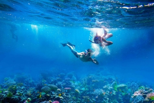 Amed: Tirta Gangga, Jemeluk Bay, & Virgin Beach Day Trip
