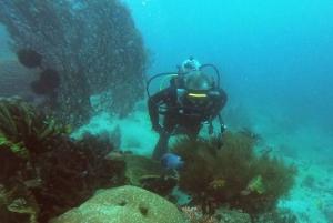 Bali: 2-Day PADI Advanced Open Water Course