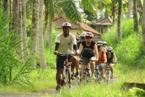 Bali Countryside Cycling Tour