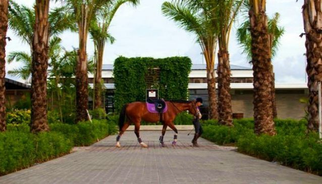 Bali Equestrian Centre