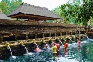 Bali: Full-Day Private Water Temple Ritual & Yoga Class