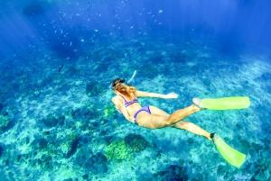 Bali: Full-Day Snorkeling Trip to Nusa Penida & Manta Point