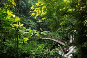 Bali: Hanging Gardens Spa Massage
