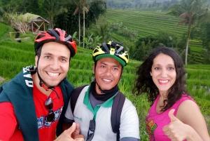 Bali: Jatiluwih Full-Day E-Bike and Trekking Tour