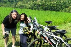 Bali: Jatiluwih Rice Terraces 1-Hour Electric Bike Tour